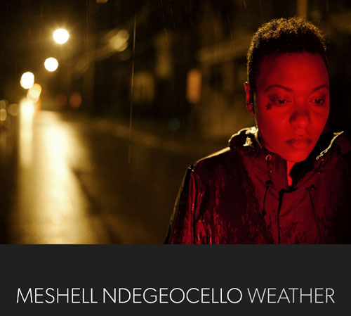 meshell-ndegeocello-weather-cover