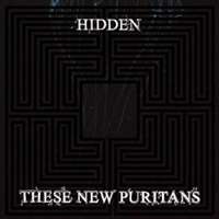 tehse new puritans