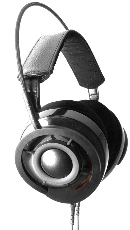 Audioquest Nightowl Carbon Muscheln