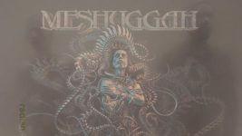 Radian | Meshuggah | Tame Impala