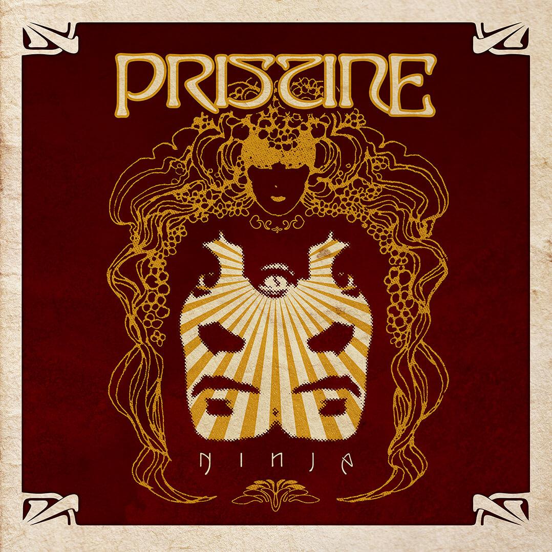 Pristine Ninja Cover