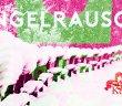 Engelrausch – Fröhliche Stille Nacht | Kelpie – Schneetreiben Teaser
