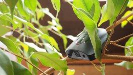 Audioquest Beetle D/A-Wandler und Kopfhörerverstärker