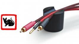 Black Cat Cable