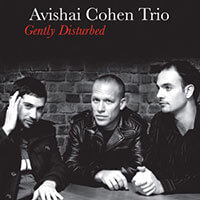 [Avishai Cohen – Gently Disturbed (2008)]