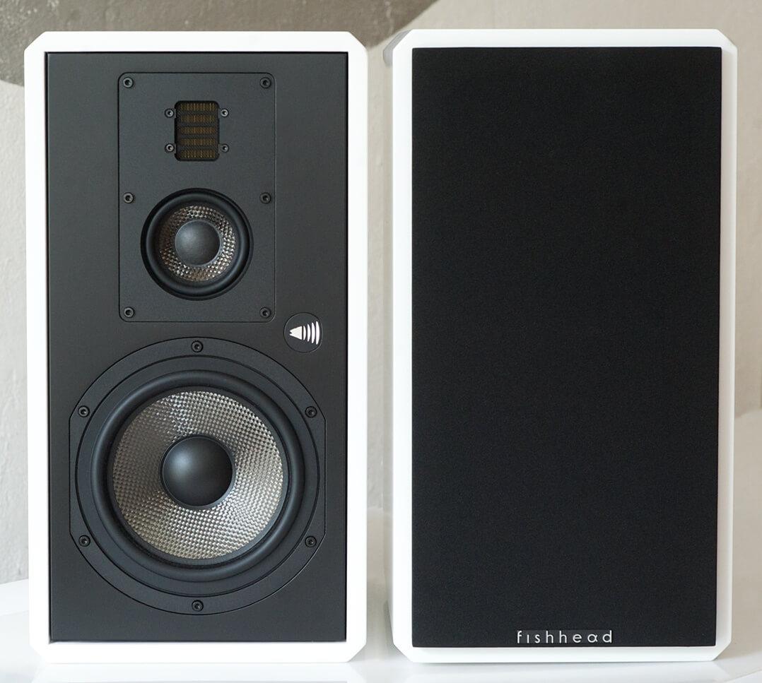 Fishhead Audio Resolution 1.6 BS, Paar mit und ohne Abdeckung