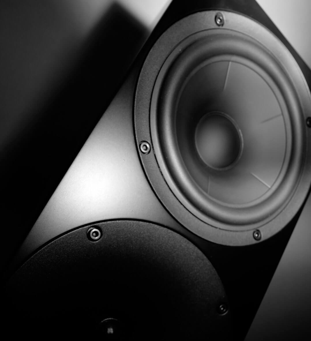 Buchardt Audio S400 Bass-/Mitteltöner
