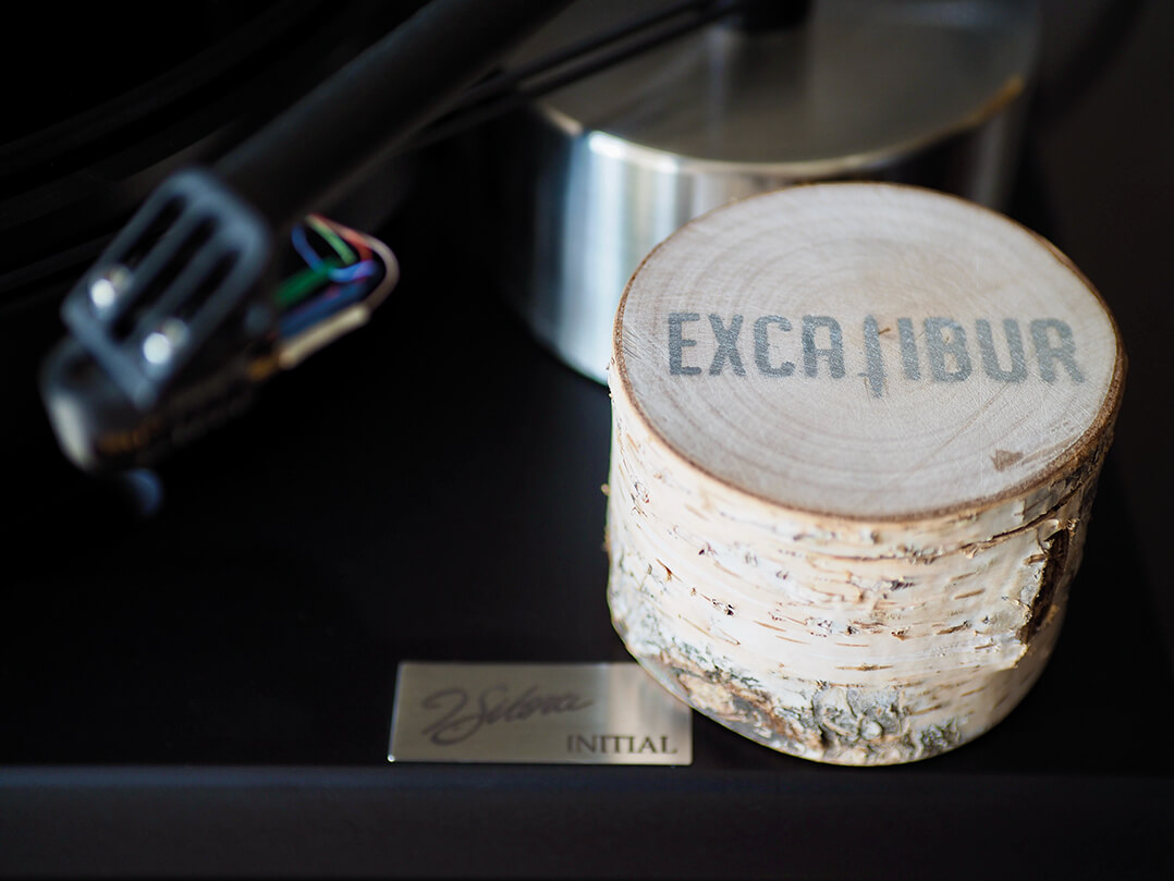 Das Excalibur Platinum kommt im Birkenstamm