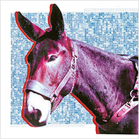 Ultimate Success Today - Protomartyr