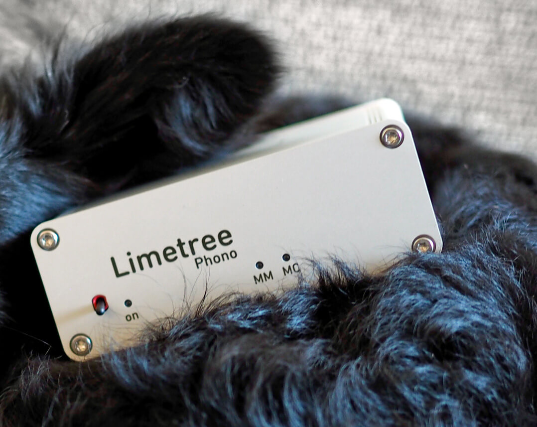 Lindemann Limetree Phono II - Ohren auf!