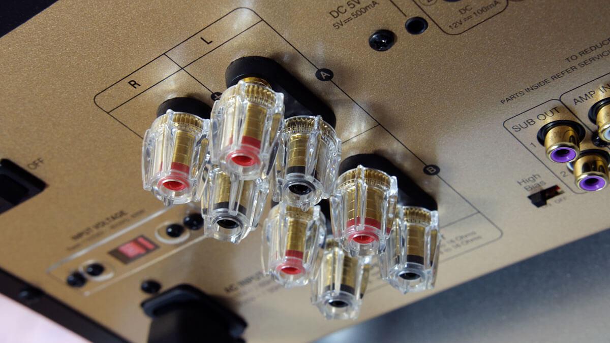 Advance Paris A10 Classic: Lautsprecheranschlüsse