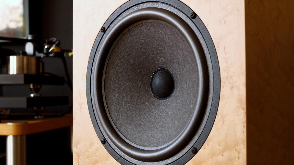 Audio Note AN-K/SPe: Bass-Mittelton-Treiber