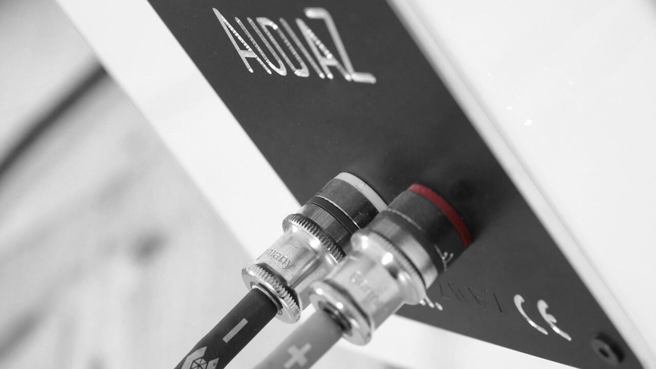 AudiaZ Cadenza: Anschlussterminal von WBT