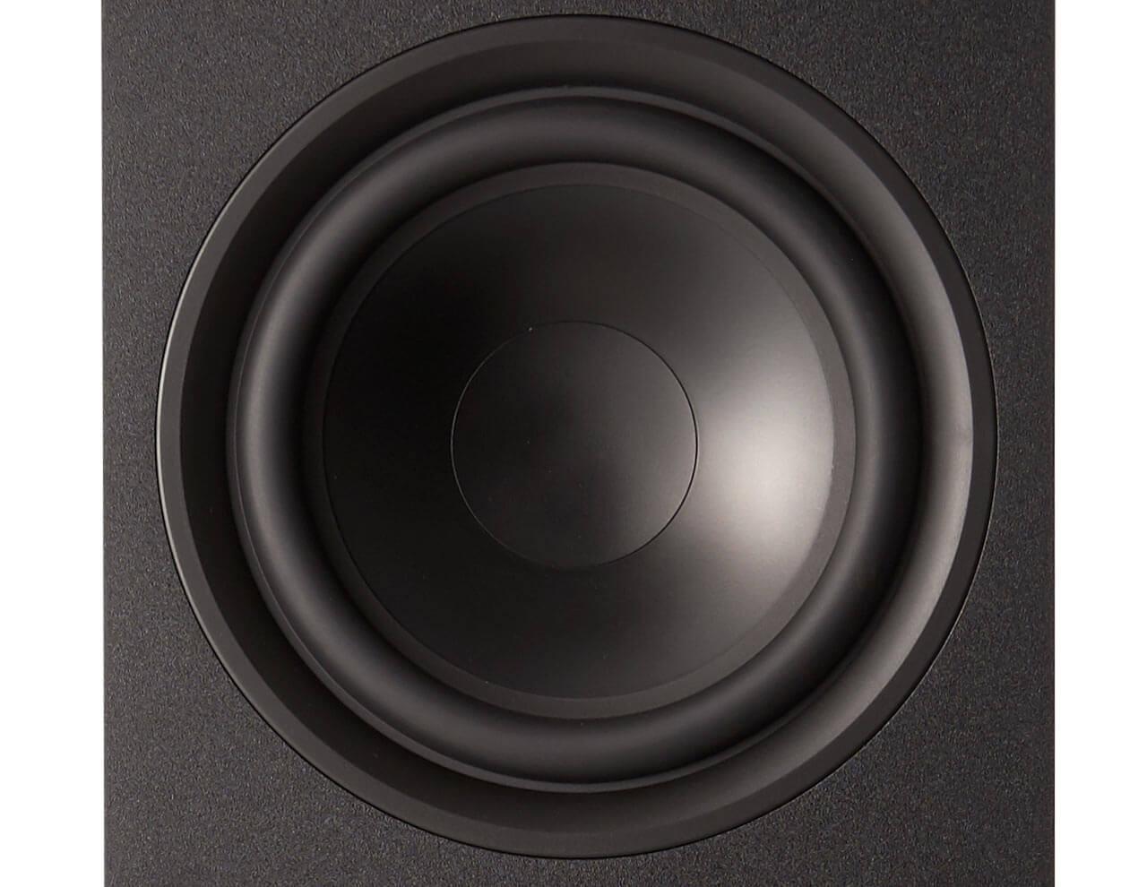 Die Saxx Truesound TS 900 ist mit zwei 8-Zöllern für den Bass- und Mitteltonbereich bestückt