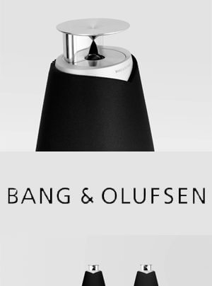 Bang & Olufsen BeoLab 20 Wireless-Standlautsprecher